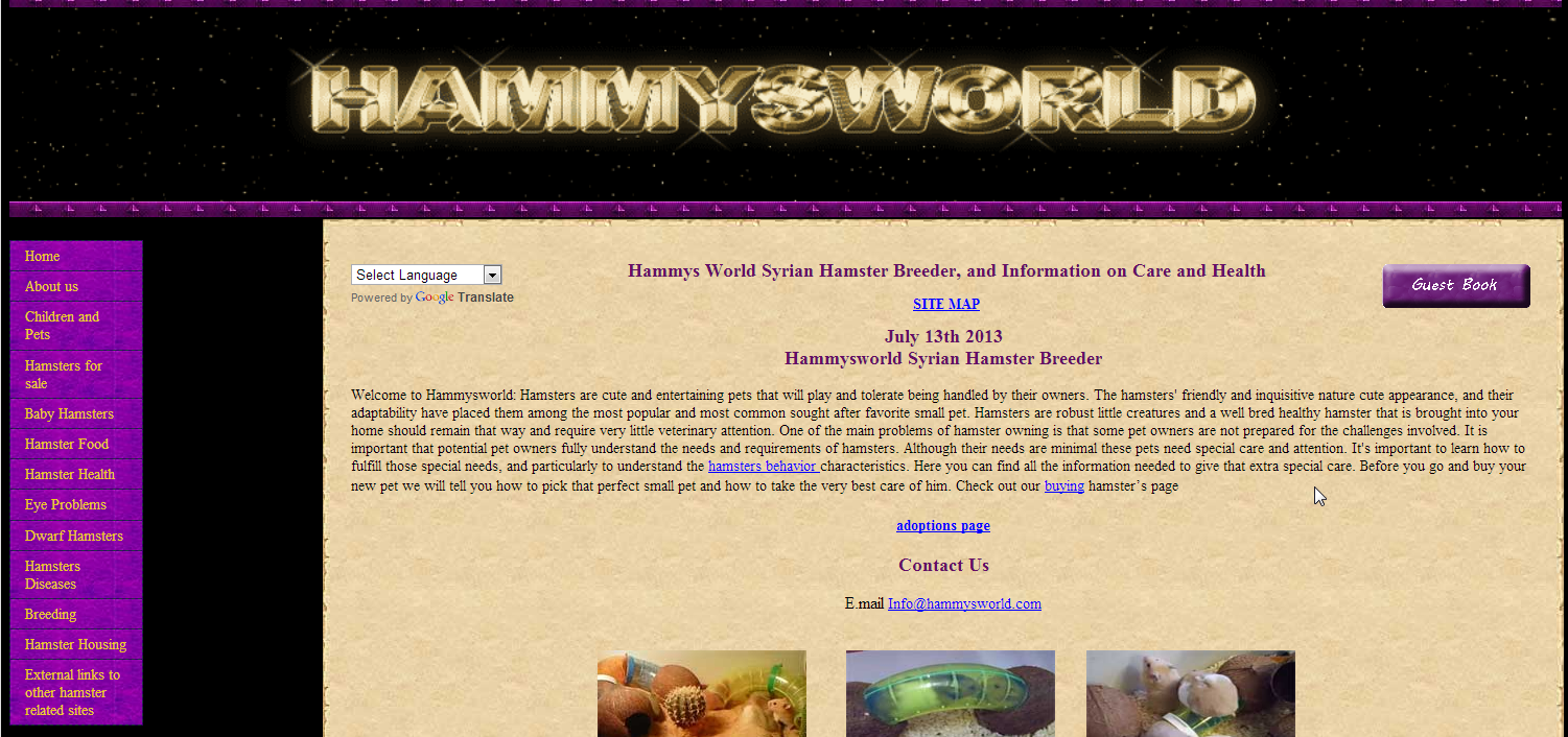 Hamster Site Review: Hammysworld