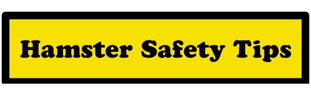 hamster-safety-tips